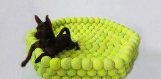 20 ideas para reutilizar pelotas de padel o tenis