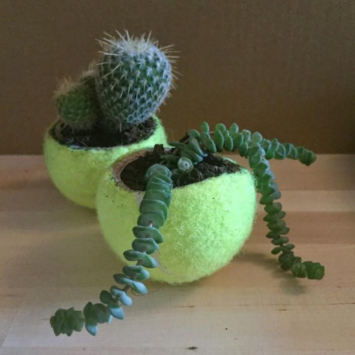 Reutilizar pelotas para usarlas como macetas para plantas pequeñas