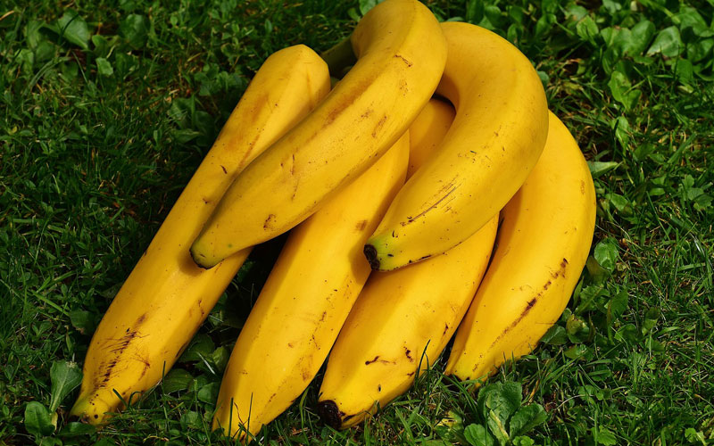 El plátano es considerada como la mejor fruta para los jugadores de pádel